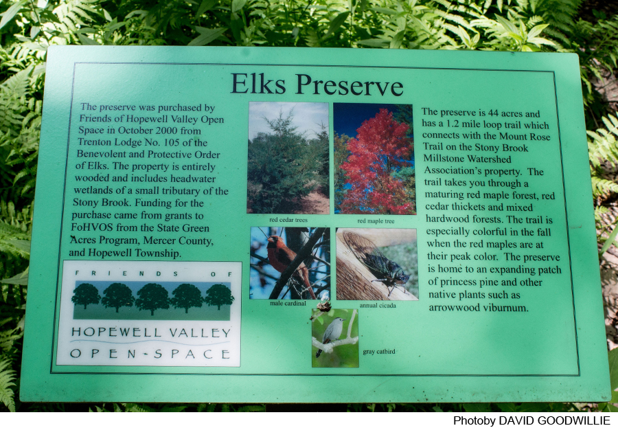 Stony Brook-Millstone Watershed: Elks Trails